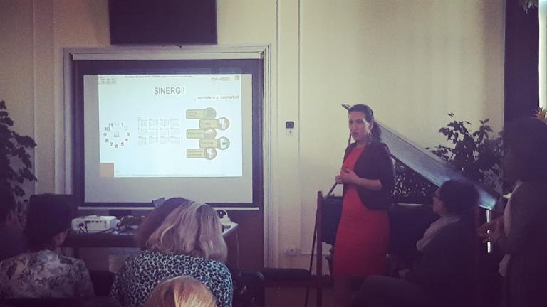 SG Workshop Mihaela Zamfir Presenting